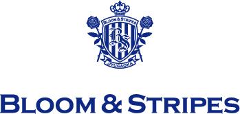 B&S_logo[1]